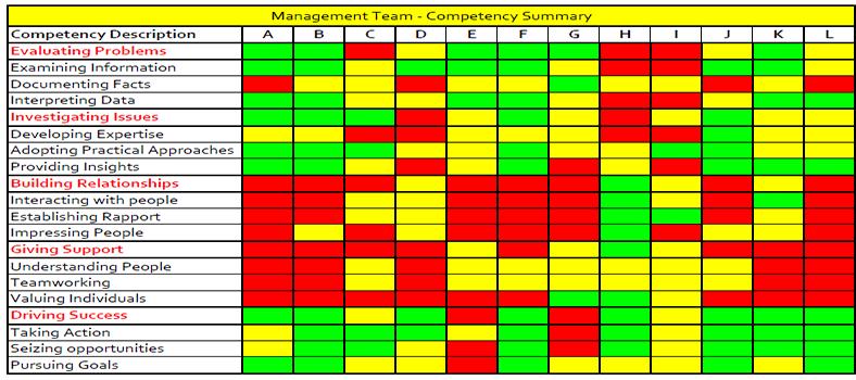 Management competency summaries
