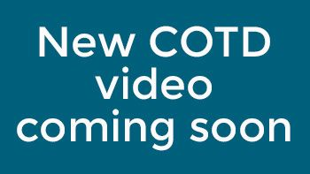 new COTD video