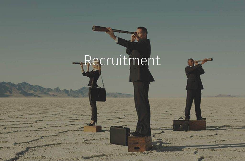 Executive Search & Recruitment – finding leaders